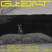 CALVIN HARRIS  RAG'N'BONE MAN sur Contact FM
