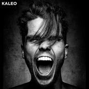 KALEO sur Bergerac 95