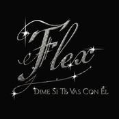 FLEX sur Latina